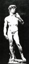 david-II